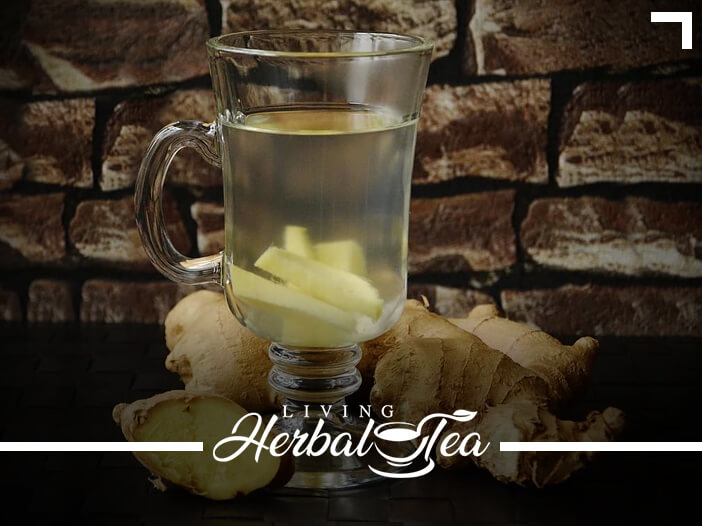 Healing Herbal Tea : Ginger