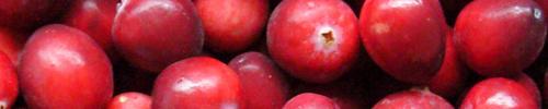 Cranberry Herbal Tea UTI