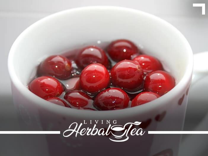 Healing Your UTI With Herbal Tea
