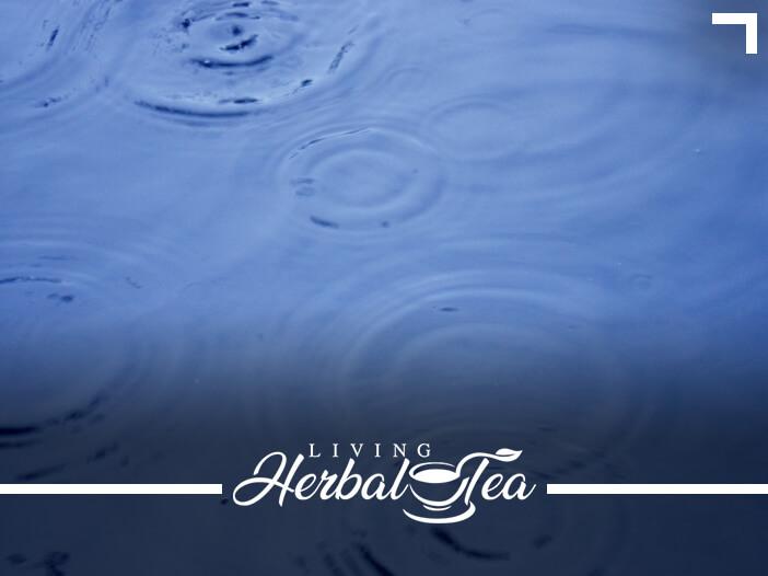 How To Take An Herbal Tea Bath