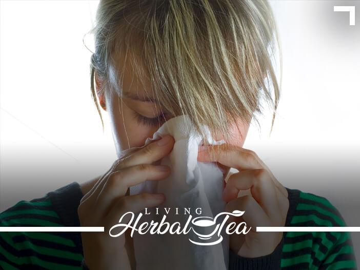 The Best Herbal Tea For Spring Allergies