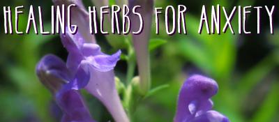 Healing Herbs For Anxiety