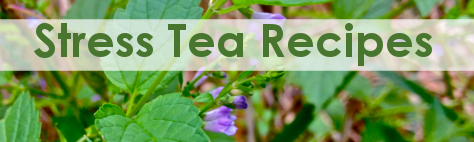Stress Herbal Tea Recipes