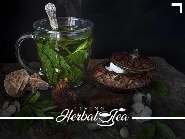 Native American Healing Herbs
